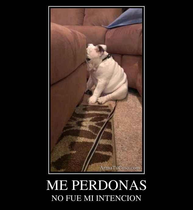 ME PERDONAS