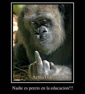 Nadie es percto en la educacion!!!