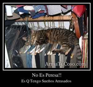 No Es Peresa!!