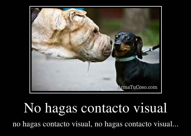 No hagas contacto visual