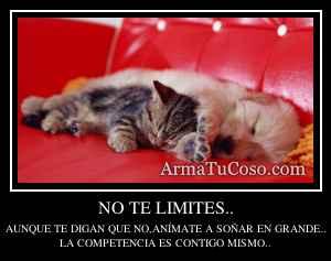 NO TE LIMITES..