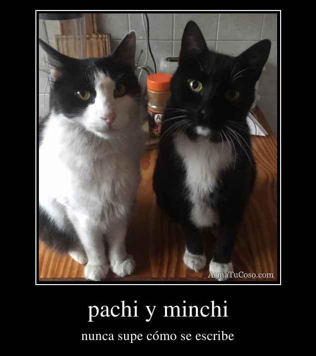 pachi y minchi