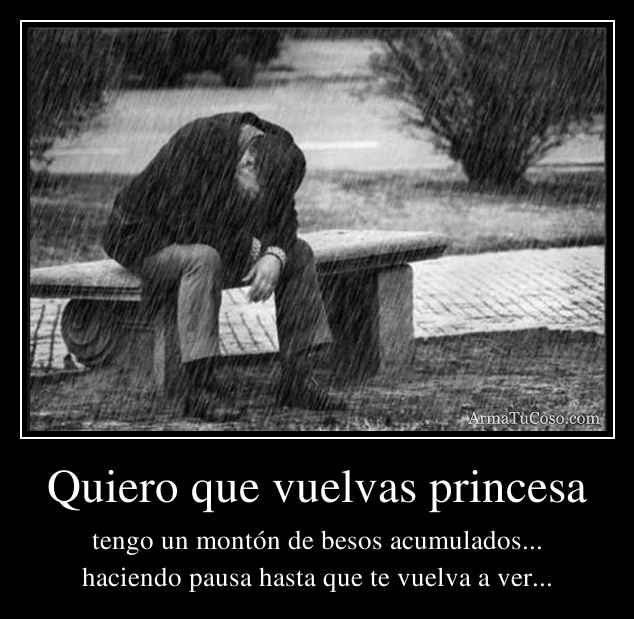 Quiero que vuelvas princesa