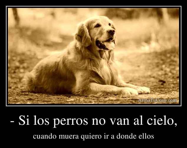 - Si los perros no van al cielo,