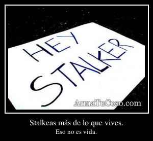Stalkeas más de lo que vives.