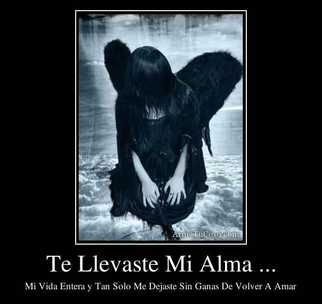 Te Llevaste Mi Alma ...