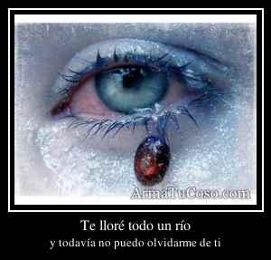 Te lloré todo un río