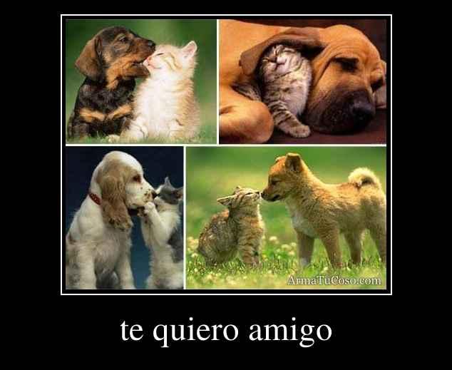 te quiero amigo