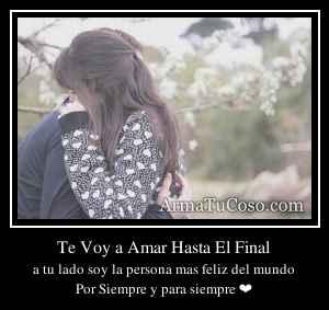Te Voy a Amar Hasta El Final
