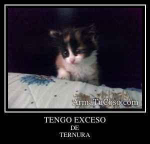 TENGO EXCESO