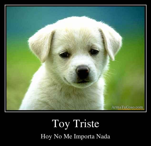 Toy Triste