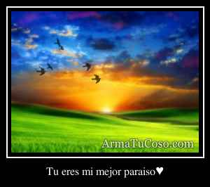 Tu eres mi mejor paraiso♥