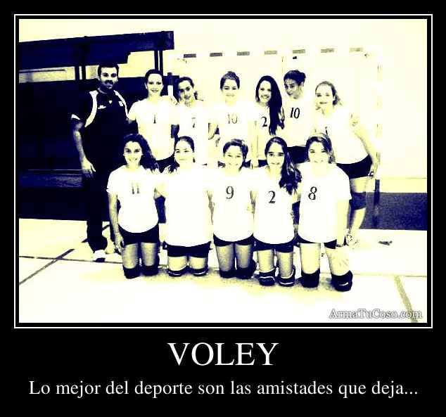 De Volleyball Con Frases Imagui