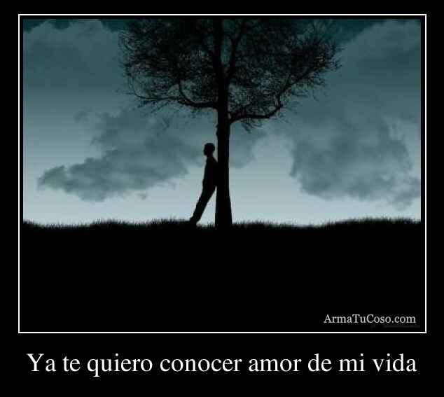 Ya te quiero conocer amor de mi vida