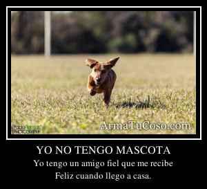 YO NO TENGO MASCOTA